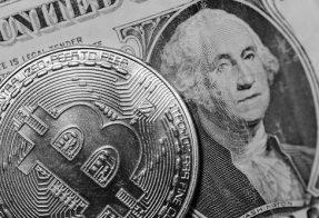 Bitcoin Luật Sư
